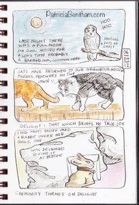 Illustrated Journal Drawing by Patricia Bentham