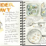 illustrated journals