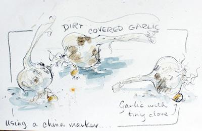 Garlic with china marker